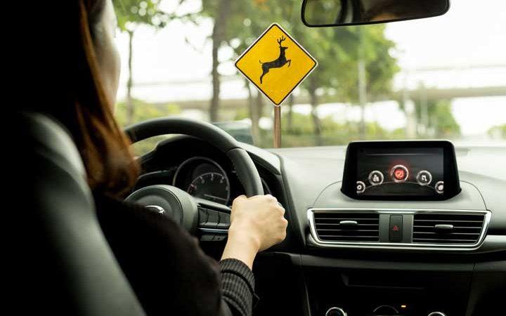 Read These Important Tips to Avoid a Common Type of Collision This Month